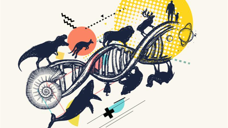 日本進化学会第23回東京大会